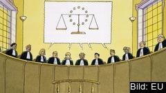 Sverige och de andra nordiska länderna rankas högst när det gäller rättsstatlighet.