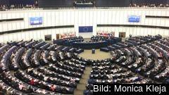 Stor ekonomisk skillnad om man väljs in i EU-parlamentet eller riksdagen.