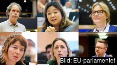 De sex svenska EU-parlamentarikerna i miljöutskottet. Övre raden: Pär Holmgren (MP) Jessica Polfjärd (M) Karin Karlsbro (L). Nedre raden: Malin Björk (V) Jytte Guteland (S) Fredrick Federley (C).