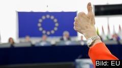 Flera svenska europaparlamentariker går emot regeringens och riksdagens position när de vill höja EU:s budget.