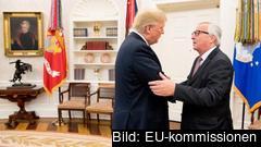 Donald Trump och Jean-Claude Juncker kom på onsdagen överens om att tillsätta en arbetsgrupp som ska arbeta med frihandelsfrågor.