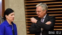EU-kommissionärna Věra Jourová och Didier Reynders ansvarar för frågor om rättsstatlighet i medlemsländerna. Arkivbild.
