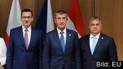 Polens, Tjeckiens och Ungerns premiärministrar nationalkonservative Mateusz Morawiecki, liberale Andrej Babiš och nationalkonservative Viktor Orbán. Arkivbild.