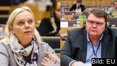 Sverigedemokraternas ledamöter, Kristina Winberg och Peter Lundgren, är enligt sju parametrar som Europaportalen granskat de minst aktiva i EU-parlamentet.
